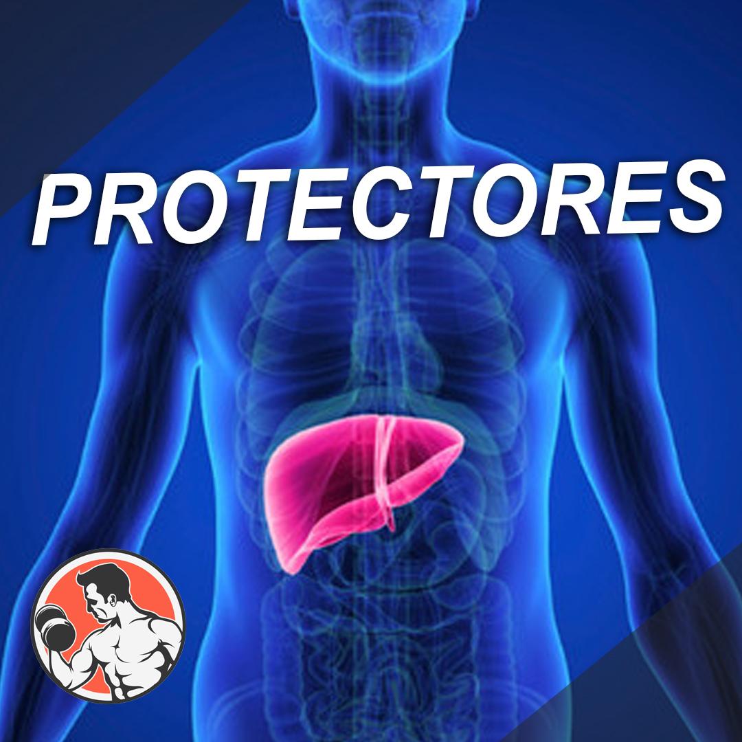 Protectores para un ciclo anabolizante - SuplementosLH